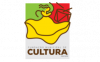 Divulgado edital de chamamento para eleições do Conselho Municipal de Cultura
